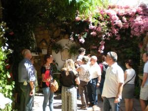 Visita por Los Patios cordobeses durante el mes de mayo